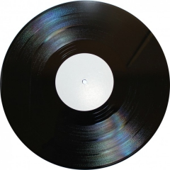 disque-vinyls-10-macarons-vierges.jpg